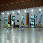 volley ll fascia